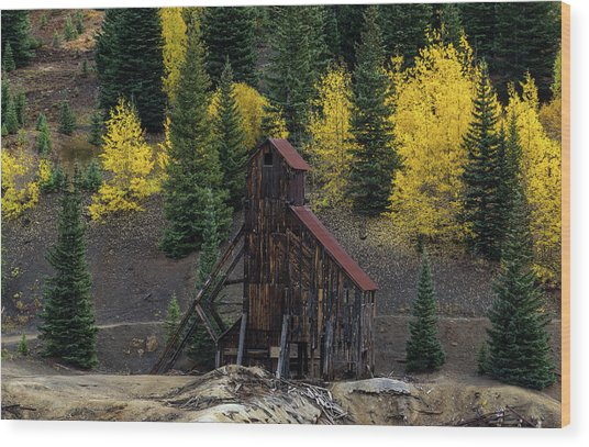 Yankee Girl Mine - 8764 Wood Print