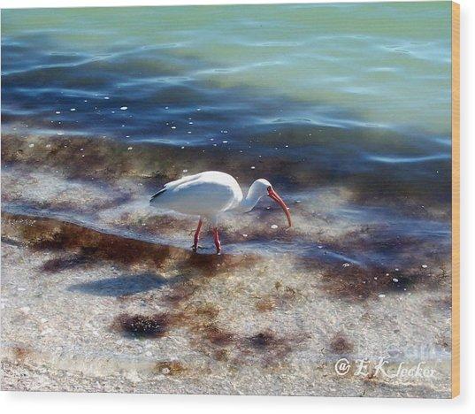 Yay Seaweed Wood Print by Elizabeth Klecker