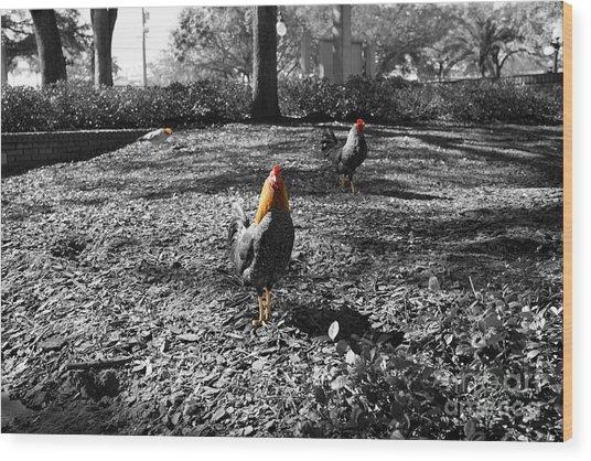 Ybor Cocks Wood Print