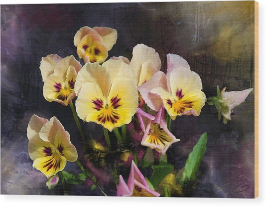 Yellow And Pink Pansies Wood Print