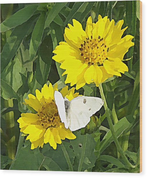 Wood Print featuring the digital art Yellow Cow Pen Daisies by Shelli Fitzpatrick