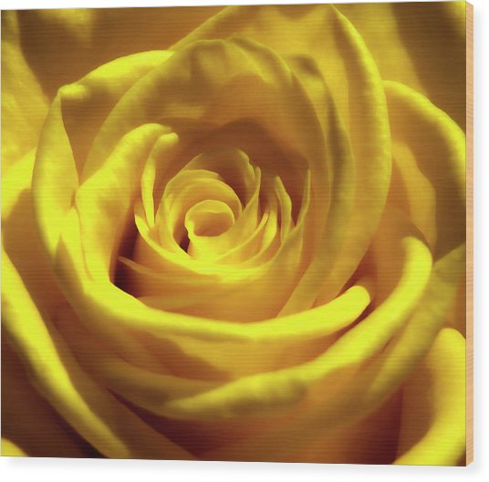 Yellow Dream 2 Wood Print