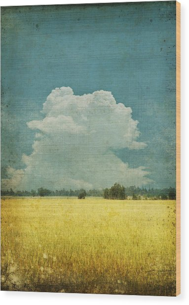 Yellow Field On Old Grunge Paper Wood Print