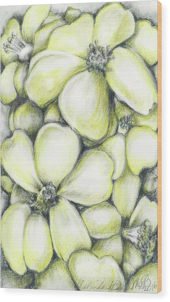 Yellow Flowers Pencil Wood Print