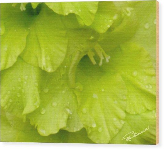 Yellow Gladiola Refreshed Wood Print