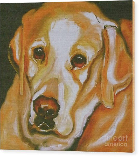 Yellow Lab Amazing Grace Wood Print