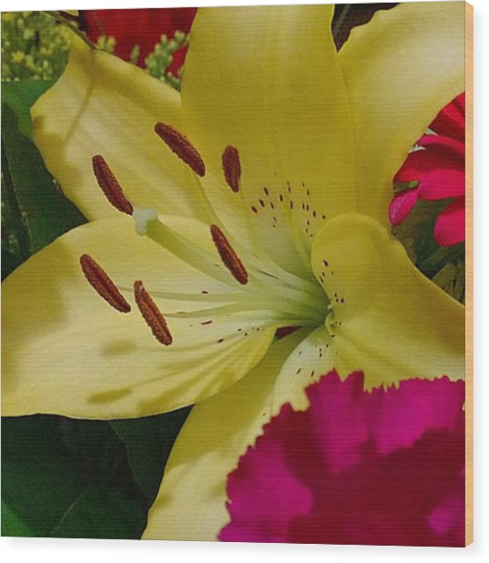 #yellow #lily Detail. Love The Pollen Wood Print