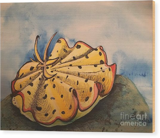 Yellow Nudibranch Wood Print