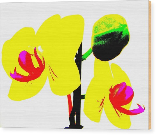 Yellow Orchids Abstract Wood Print by Beth Akerman