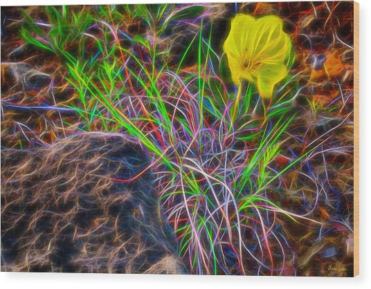Yellow Primrose Electrify Wood Print