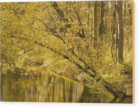 Yellow River Wood Print by Ryan  Krueger
