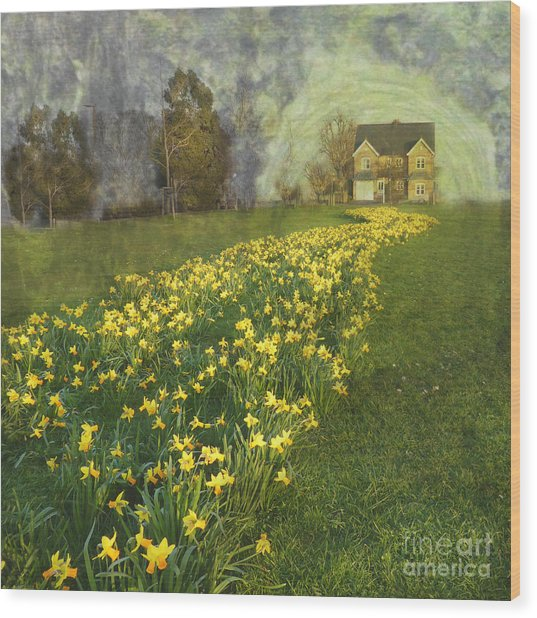 Yellow River To My Door Wood Print