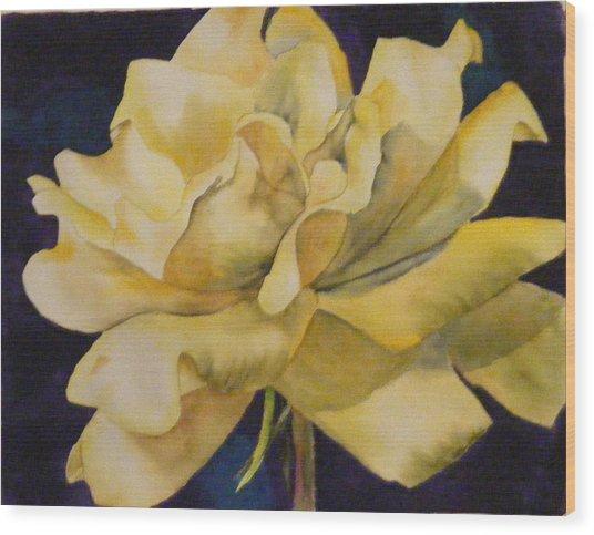 Yellow Rose 103 Wood Print