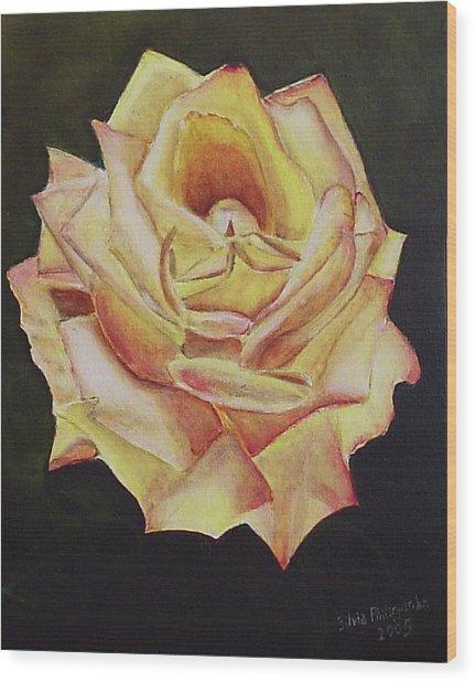 Yellow Rose Wood Print by Silvia Philippsohn