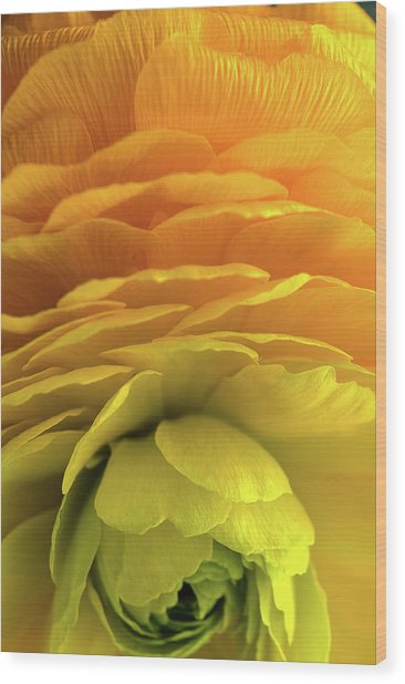Yellow Stack Wood Print