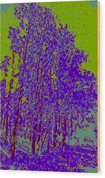 Yellow Trees D4 Wood Print by Modified Image