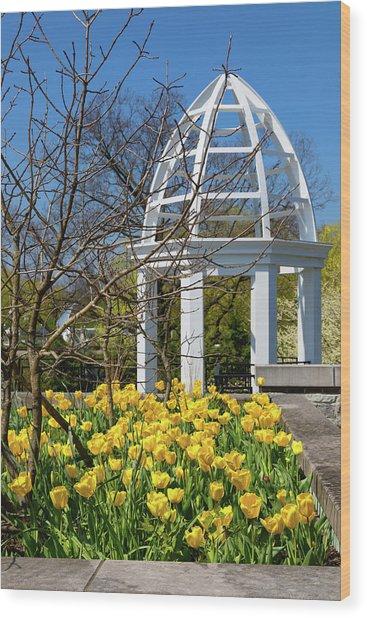 Yellow Tulips And Gazebo Wood Print