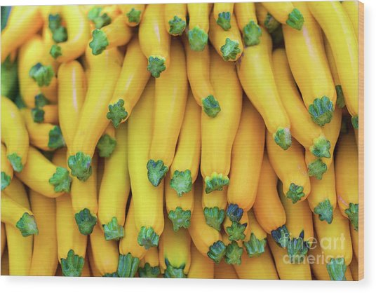 Yellow Zucchini Wood Print