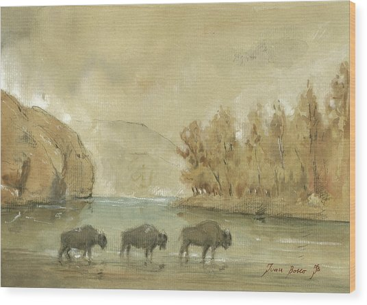 Yellowstone And Bisons Wood Print