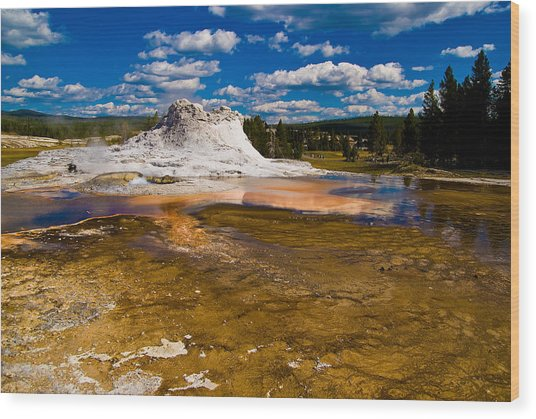 Yellowstone Geyser Wood Print by Patrick  Flynn