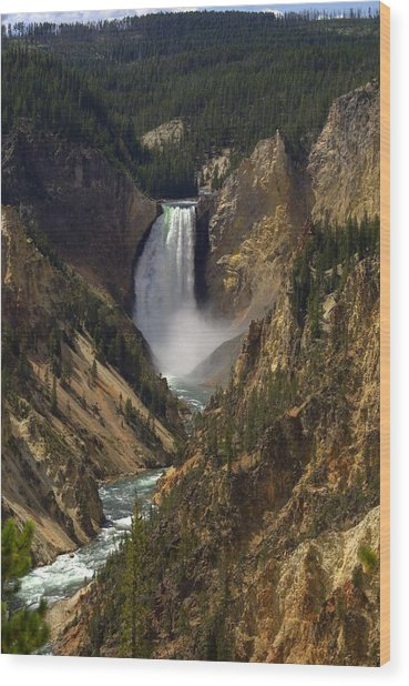 Yellowstone Lower Falls Wood Print by Patrick  Flynn