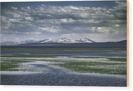 Yellowstone Mountain Scape Wood Print