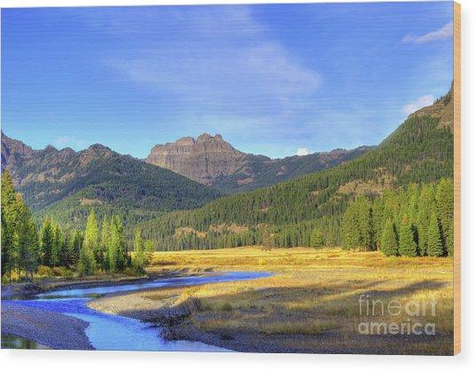 Yellowstone National Park Landscape Wood Print