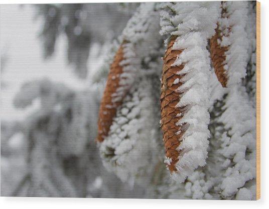 Yep, It's Winter Wood Print
