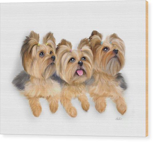 Yorkie Trio Wood Print