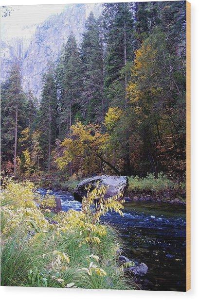 Yosemite 1 Wood Print by Vijay Sharon Govender