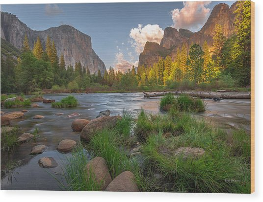 Yosemite Evening Wood Print
