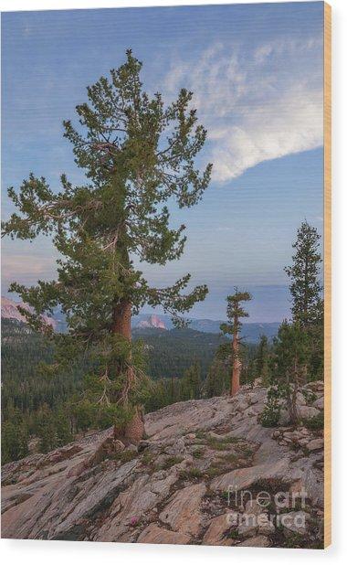 Half Dome From May Lake Wood Print