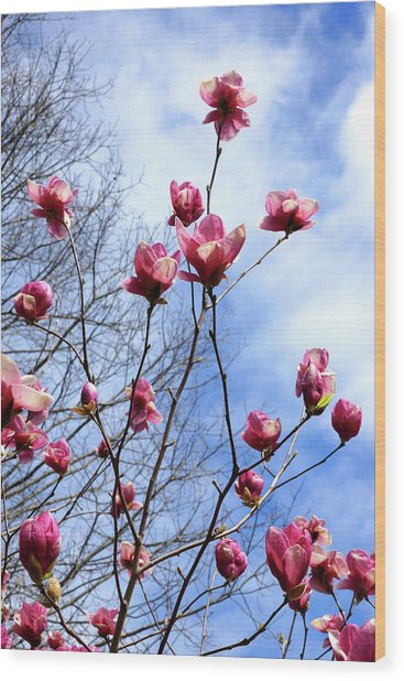 Young Blooms Wood Print
