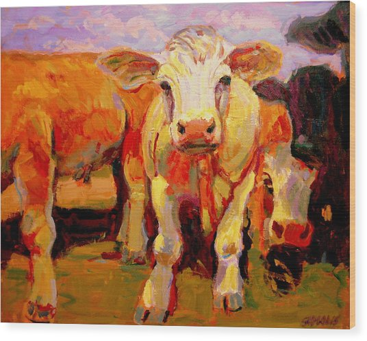 Young Cow Wood Print by Brian Simons