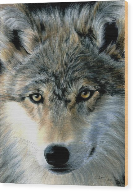 Young Wolf Wood Print