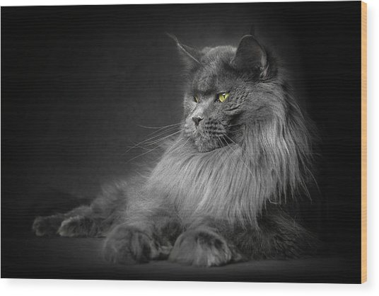 Wood Print featuring the photograph Your Majesty. by Robert Sijka