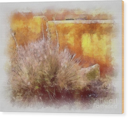 Yucca And Adobe In Aquarelle Wood Print