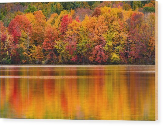 Yummy Autumn Colors Wood Print