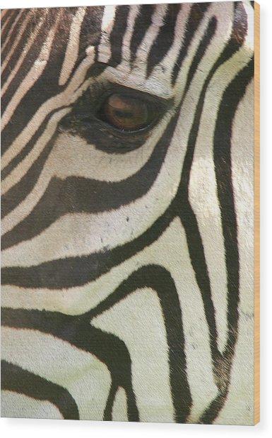Z-eye Wood Print by Donald Tusa