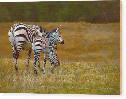 Zebra Mom And Foal Wood Print