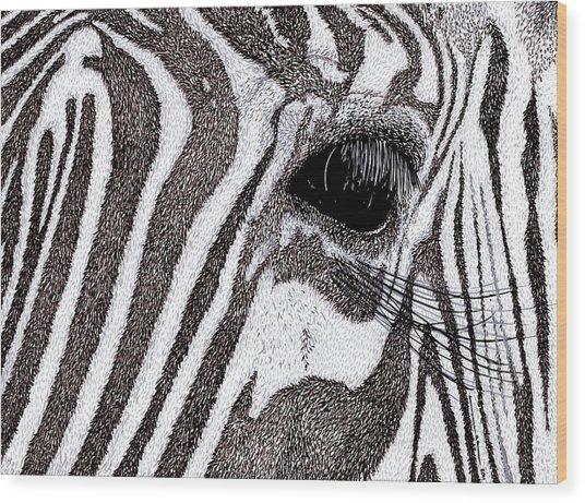 Zebra Portrait Wood Print by Karl Addison