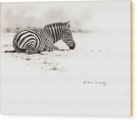 Zebra Sketch Wood Print
