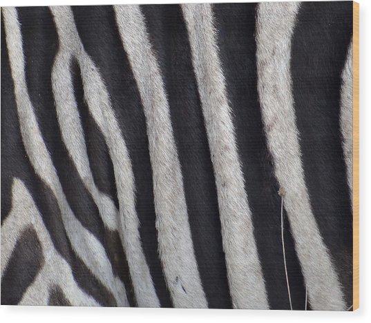 Zebra Skin Closeup Wood Print