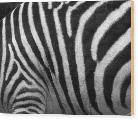 Zebra Stripes Wood Print by George Jones