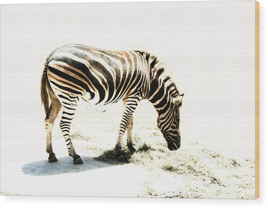 Zebra Stripes Wood Print