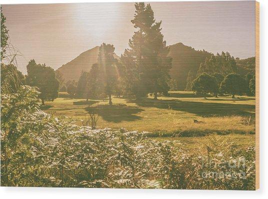 Zeehan Afternoon Meadows Wood Print