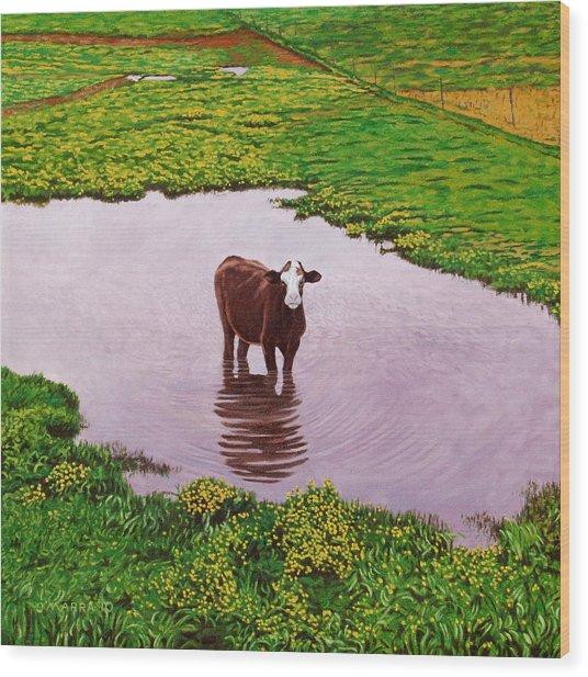 Zen Cow Wood Print
