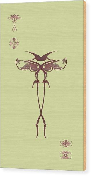 Zen Fly Specimen  Wood Print