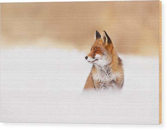 Zen Fox Series - Zen Fox In Winter Mood Wood Print