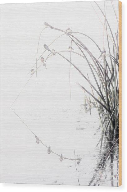 Zen Streamside Wood Print